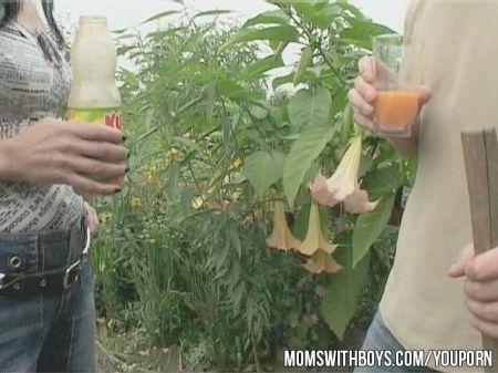 Mujeres En Mini Chupando Pija